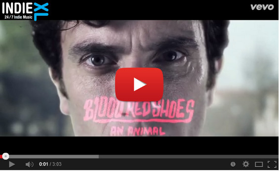 videoclip-BloodRedShoes-anAnimal