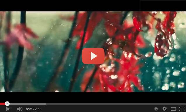 videoclip-TheFamilyRain